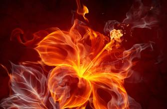 Описание элементов Огня Инь и Огня Ян в карте Бац зы
